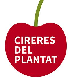 Cerezas del Plantat